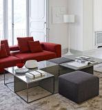 Самомоднейший квадратный стеклянный журнальный стол с табуреткой для живущий комнаты (CTS-008)