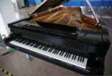 판매를 위한 최신 가격 검정 연주회용 그랜드피아노 피아노