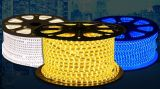 Luminosité 12W / M SMD 3014 DC220V LED Corpe Light for Decoration