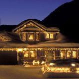 Het LEIDENE van de LEIDENE Lichte LEIDENE van het Koord Lichten van Kerstmis Licht van de Vakantie