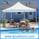 3X4.5m Outdoor Gazebo Shelter Car Canopy Tent