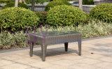 sofà esterno impermeabile del giardino della villa di svago della canna di rattan by-427