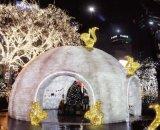 クリスマス3Dの動物のモチーフLEDライト