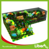 Rent精々Priceのための子供Indoor Play Equipment