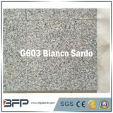 Polished Granite Facade Stone Tile for Exterior Wall Cladding in Grey Color