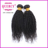 Fabbrica Price Kinky Curl Human brasiliano Hair Weaves per le donne di colore