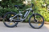 En15194の2016ヨーロッパの熱い販売の電気自転車