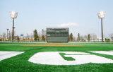 Hierba artificial barata de Guangzhou para el fútbol (Y60)