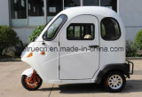 Tricycle électrique de pleine cabine mini