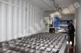 Containerisierter Block-Eis-Hersteller der Salzlösung-2016