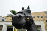 Nylon Halter для лошади с кожей