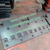 La Cina Hebei Comb Type Expansion Joint (fatto in Cina)