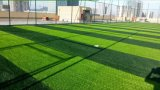 Fibrillated caldo Artificial Turf Grass per Tennis