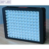 Alto valor de PAR 600W LED Grow Light para vegetais crescendo