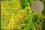 Organisches 60% Aminosäure-Düngemittel der Qualitäts-