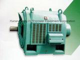 De Eenheid van de Generator van de waterkracht/de HydroTurbine Hydroturbine (van het Water)