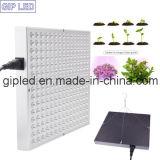 Diodo emissor de luz Grow Light do painel 45W Hydroponic para Potted Plants