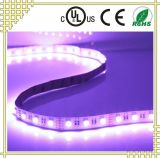 RGB+W flexibler LED Streifen mit UL-Cer RoHS Bescheinigungen