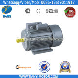 단 하나 Phase Ycl 2HP Electric Motor