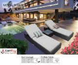 Белым коммерчески салон отдыха мебели пляжа гостиницы используемый бассеином