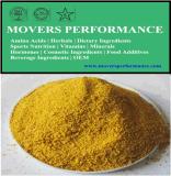 Heißes Verkaufs-Vitamin-Fol- Säure /Vitamin B9