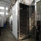 Vakuumfrost-trocknende Maschine