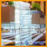 El modelo de Mixc Shangai/los modelos comerciales/multimedia /Project modelo del sonido del edificio y de la luz que construye el modelo
