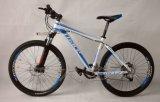 Общественный Велосипед-Коммерчески Bike публики переменной скорости