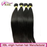 Extensões brasileiras do cabelo do Virgin reto de seda livre do emaranhado