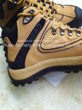 Cer-Sport-Art-Sicherheits-Schuh Sn5216, Form-Entwurf und bequemes