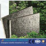 El panel de techo ligero excelente de las lanas de madera de la absorción sana