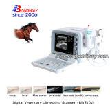 Scanner van de Ultrasone klank van het gebruik de Vriendschappelijke Veterinaire