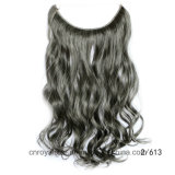 Flip высокого качества цены по прейскуранту завода-изготовителя в выдвижении волос волос Remy