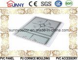 Estampage chaud de plafond de Panneau-PVC de PVC pour la décoration de mur