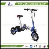卸し売り中国の製造者の電気Unicycleの小型にスクーターの自己のバランスをとること