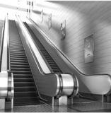 800mm Aluminiumwohnhauptinnenpreis-Rolltreppe