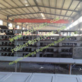 Hochleistungs- Steel Plate Expansion Joint (Sold nach Singapur)