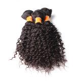 Weave indiano do cabelo humano do Virgin do cabelo da extensão barata do cabelo (FDX-SM-2016-6)
