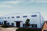 Estructura de acero Buidling del fabricante profesional con 20 años de experiencia