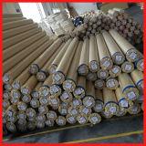 Alto Qualiy Backlit Flex PVC Banner Sb530 Glossy