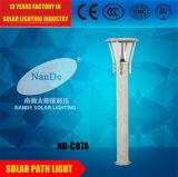 Lumières solaires de jardin de l'intense luminosité IP65 avec le certificat de la CE