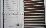 Obturateur borgne en aluminium de qualité chaude de vente pour la Chambre Using