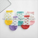 Helle Farben-klare Baby-Baumwolle Jacquardsocks