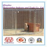 Câmara de ar redonda gaiola galvanizada do cão da gaiola do engranzamento de fio