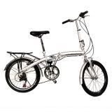 """20 """" esportes de dobramento da escola da prata da dobra da bicicleta do esporte da velocidade da bicicleta 6"""