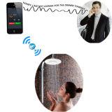 Ванная комната Аудио душа с беспроводной Bluetooth спикер