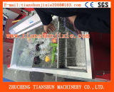 Machine de nettoyage de l'ozone pour la stérilisation d'aubergine