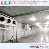 Quarto de armazenamento frio no local dos peixes da estrutura de edifício da instalação na Zâmbia