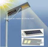 Ce RoHS IP65 5W-100W tutto in un indicatore luminoso di via solare Integrated dell'indicatore luminoso solare del giardino della lampada di via del sensore LED dell'indicatore luminoso del sensore di movimento