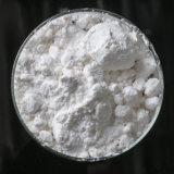 De Drug Piracetam van Nootropics voor de Gezondheid van Hersenen